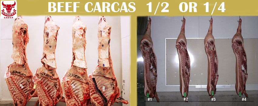 BEEF MEAT CARCAS 1/2 or 1/4